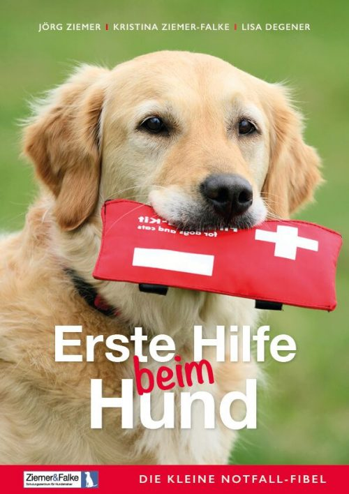Erste Hilfe beim Hunde - EBook