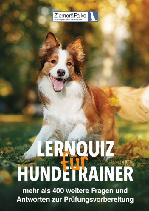Lernquiz für Hundetrainer